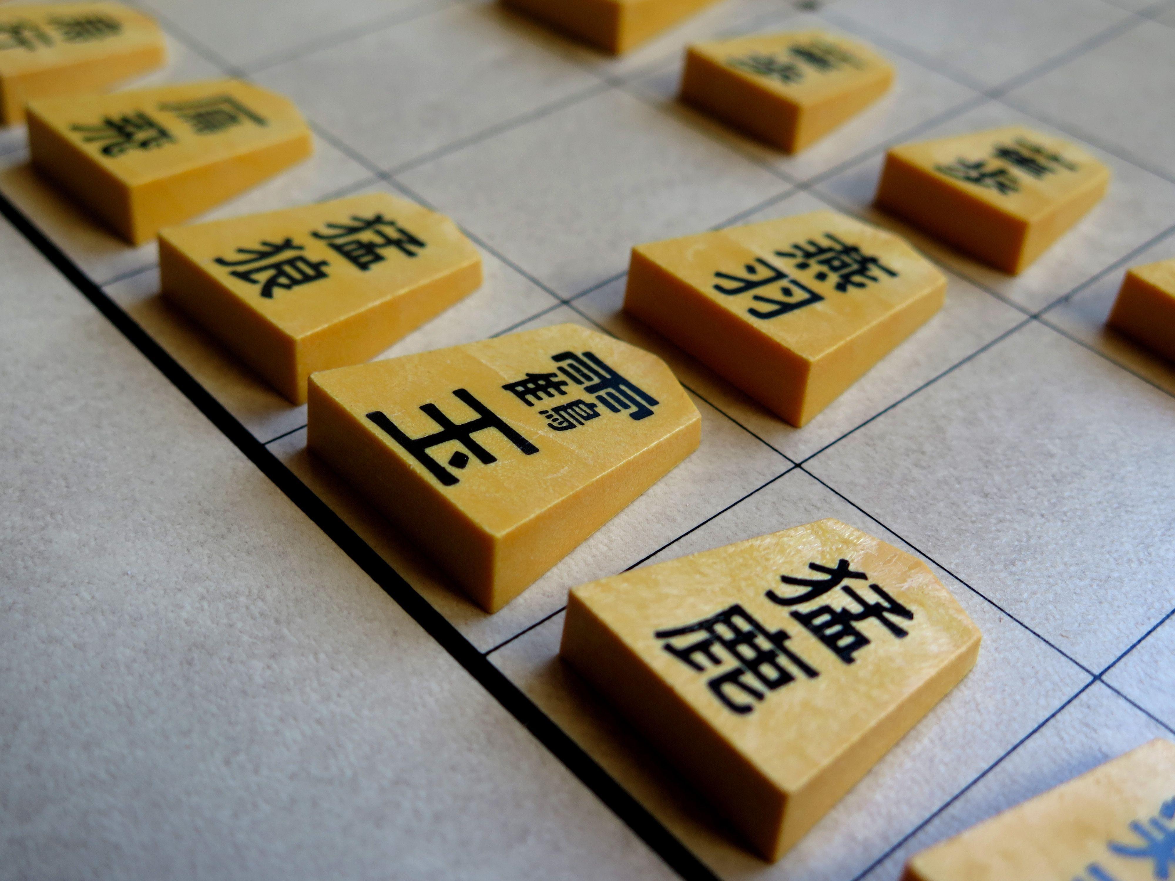 wa-shogi-closeup