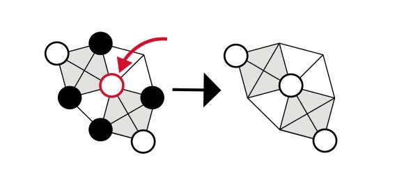 onyx-double-capture-diagram-01