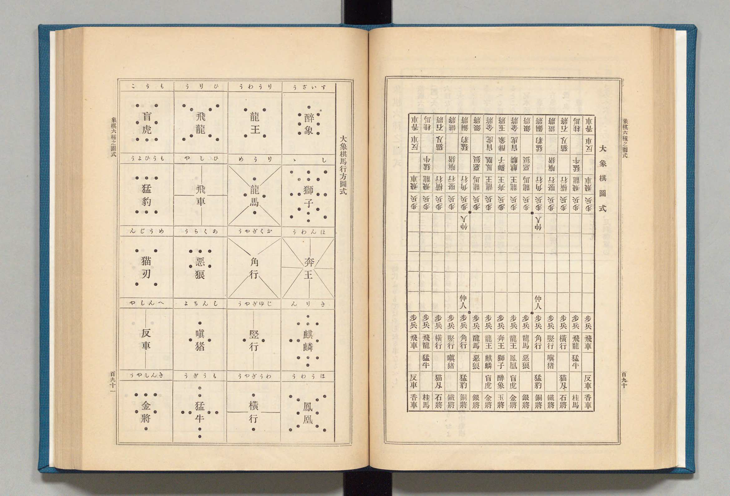 dai-shogi-book-scan